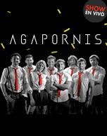 Love & Cumbia con Agapornis