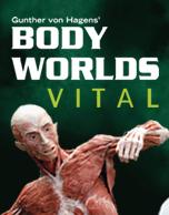 Body Worlds Vital 2017