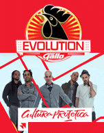 Gallo Evolution Pana 2015 Cultura Profética