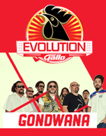 Gallo Evolution Pana 2015 Gondwana